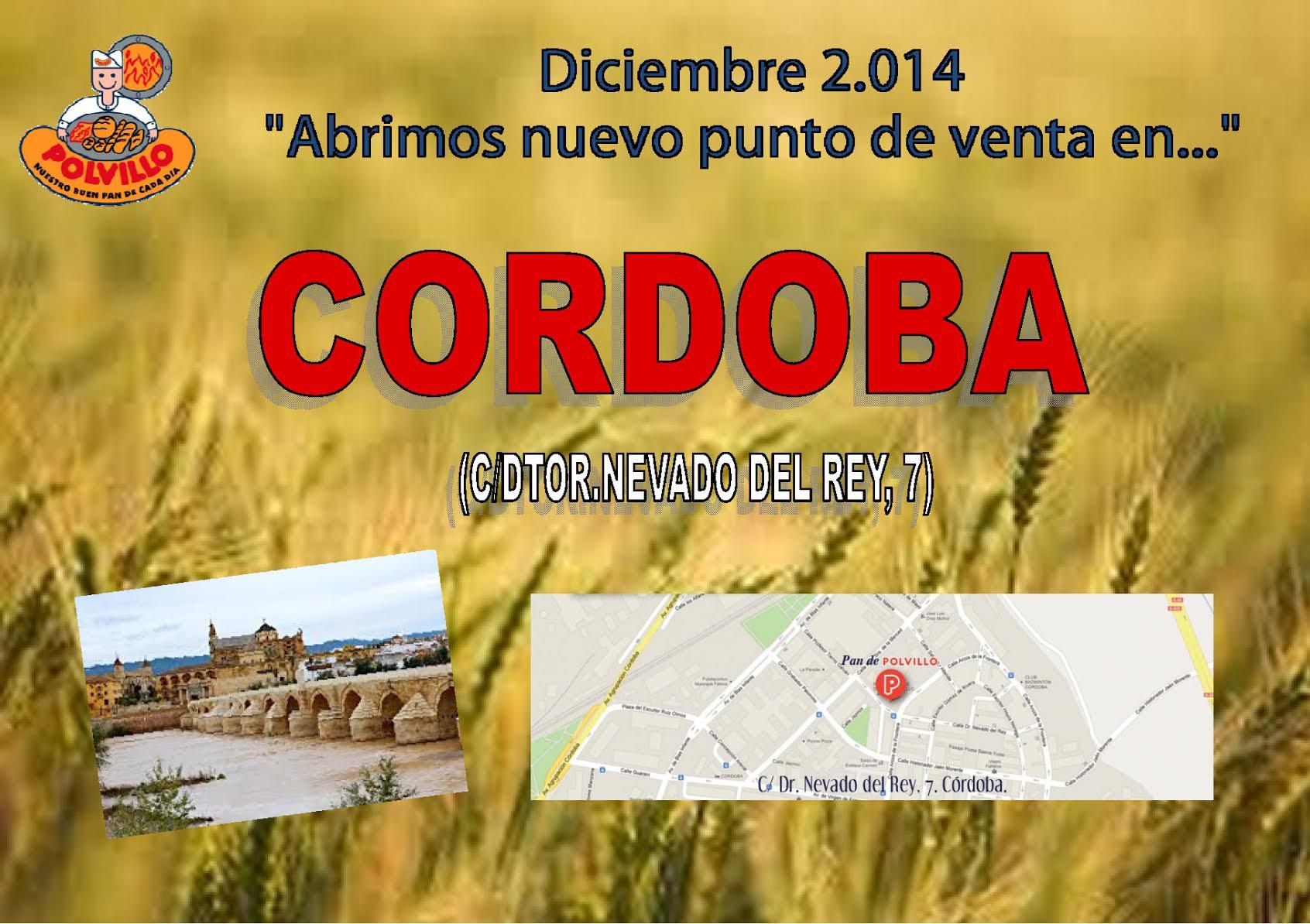 Apertura Córdoba, Calle Doctor Nevado del Rey, 7