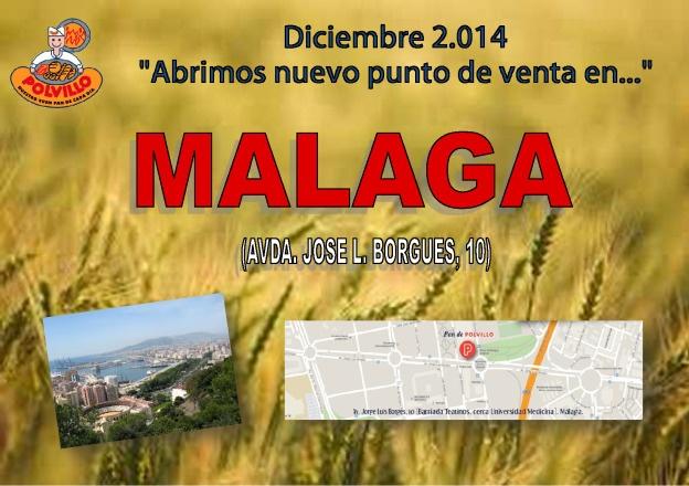 Apertura Málaga, Avda José L. Borgues, 10