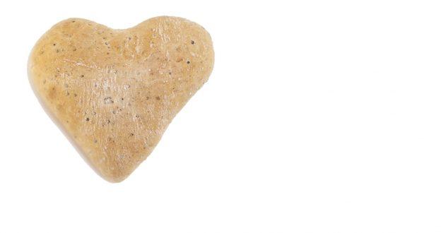 Panvillo de quinoa Polvillo